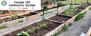 Community Garden March 2018